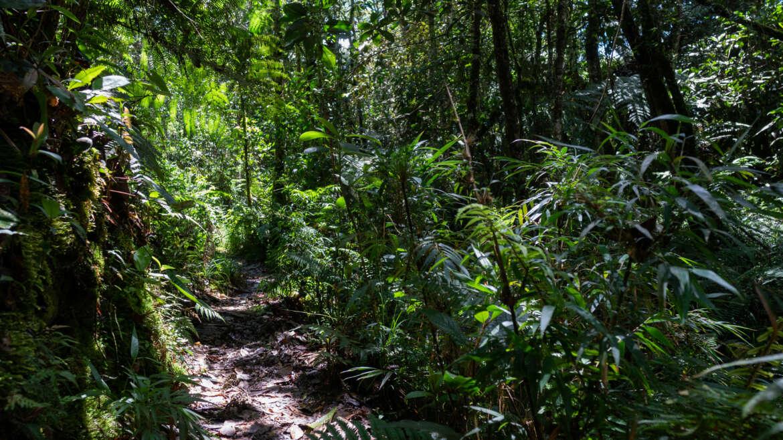 Fondos de Agua 2.0 Resilientes por el Agua  - Visita de campo - Colombia